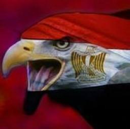 Aboghazala  Abdelfatah